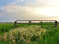 Spanjaardsdijk - Zuidhorn (4)