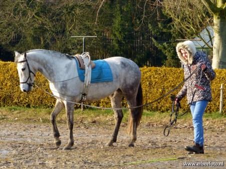 Meisje traint haar paard. En ze vond 't prima dat ik een foto maakte.