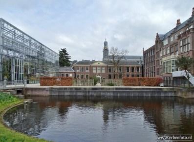 Leiden - Hortus 08
