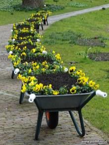 Leiden - Hortus 11