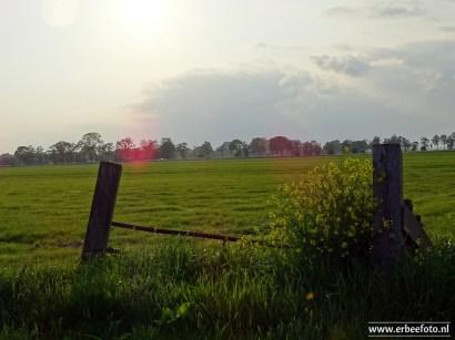 Faan_Zuidhorn_08