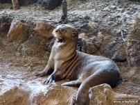 Aqua Zoo (Leeuwarden) 09