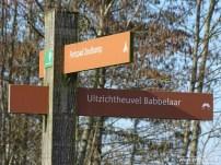 201902_uitzichtheuvel babbelaar lauwersmeer 11