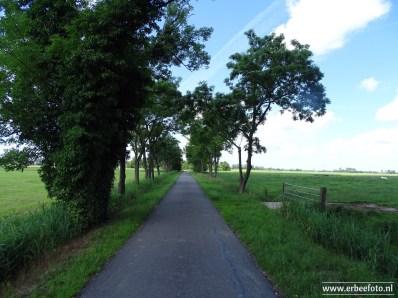ErBeeFoto_Bij Leegkerk