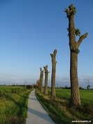 Fietsen Nieuwbrug - Den Horn - Zuiderburen 02