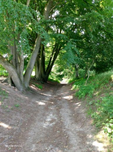 Nationaal Park Veluwezoom 09