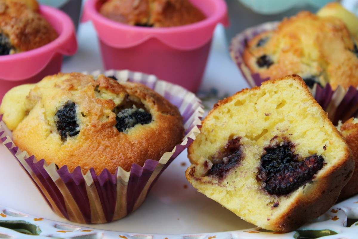dolce, tortini, muffin, dolci, more di gelso