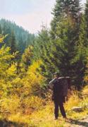 Fedezzük fel az őszi színekben pompázó hegyeket!
