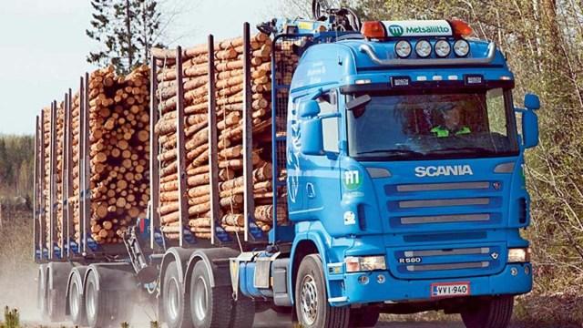 Россия больше не хочет торговать необработанной древесиной