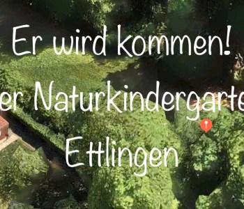 Der Naturkindergarten