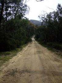 Roads14