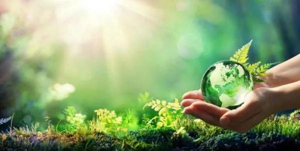 Cómo cuidar el medio ambiente - Erenovable.com