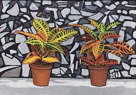 דוד ריב - שני צמחי בית עם ציור מראה כהה, 2008