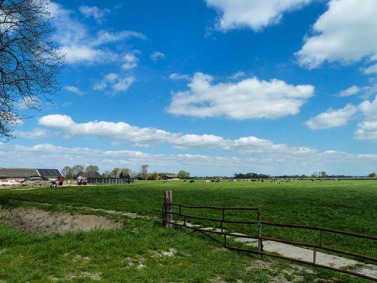 Landschap bij Luddeweer