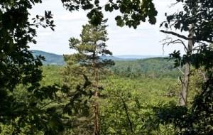 Thüringer Wald Rundfahrt