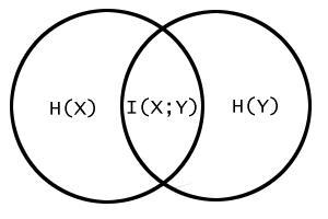 Mutual information as a Venn diagram