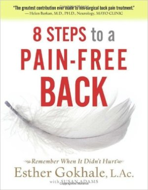 best low back pain books - 8 Steps to a Pain-Free Back- Natural Posture Solutions for Pain in the Back, Neck, Shoulder, Hip, Knee, and Foot