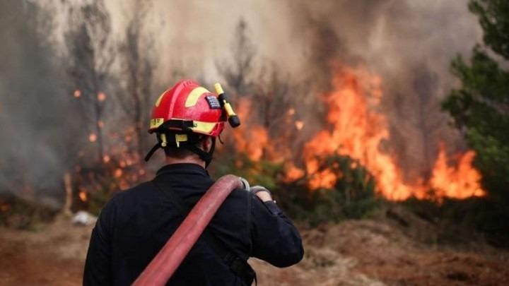 Χαλκιδική και Πιερία: Οι πιο ευάλωτες περιοχές για πυρκαγιές