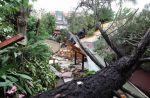 Έργα 3,5 εκατ. ευρώ για την αποκατάσταση των καταστροφών του 2019 στη Χαλκιδική