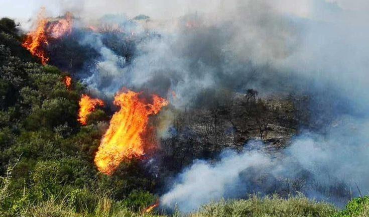 Φωτιά στη Σιθωνία Χαλκιδικής