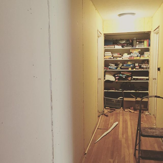 Michael finished demo on the hallway. Soon to rebuild the closet door and then paint.