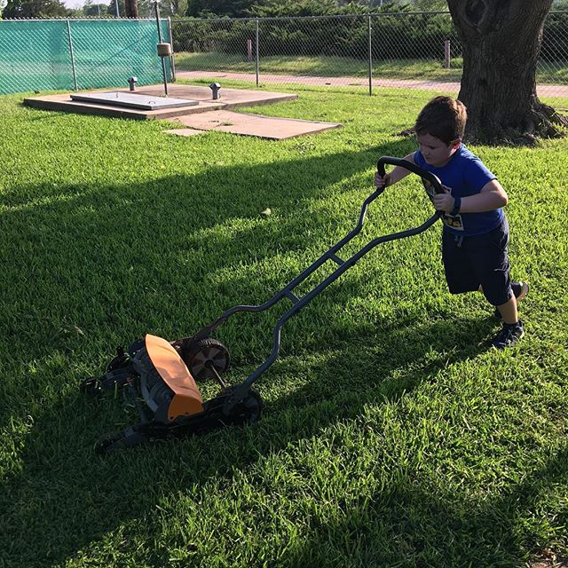 Mowing the lawn with a rotary mower. He's got the strength. Now if only he could learn straight lines...
