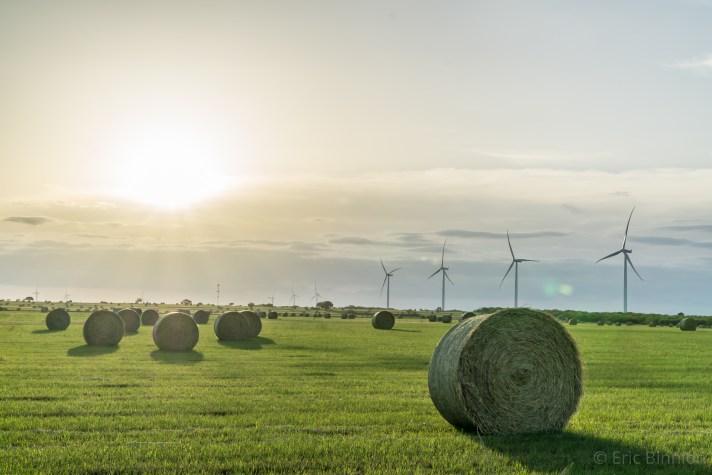 windthorst_windmill_haybale