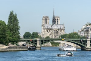 Notre Dame from afar