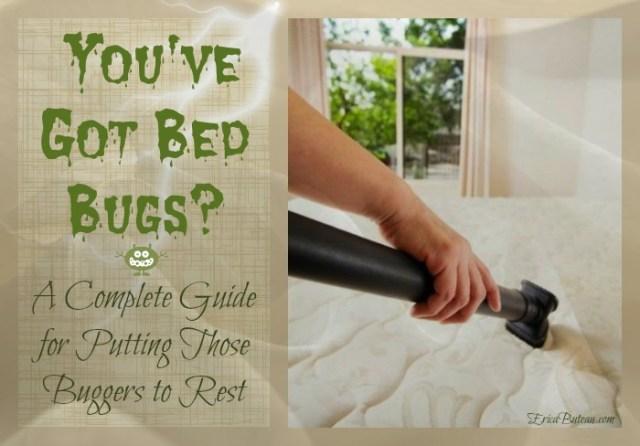got bed bugs