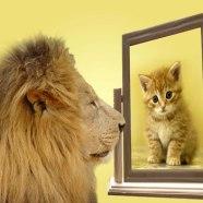 Smettere di criticarsi: come trasformare il nostro giudice interiore nel nostro più prezioso consigliere.