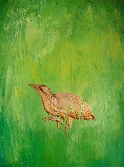 Sold Bittern Oil Painting40x30cm