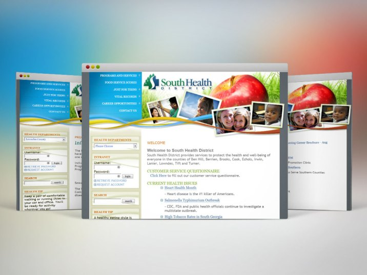 Web Design   South Health District (2010)