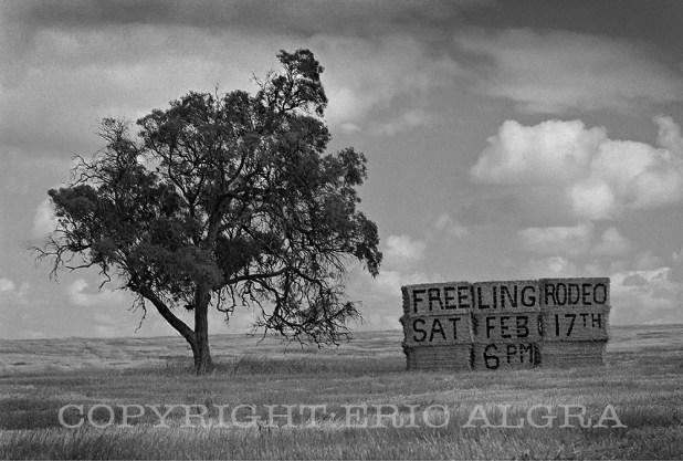 Freeling Rodeo