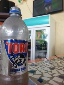 Beach Toro