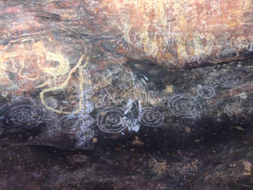 Cave art at Uluru as captured by adventure travel guide Erica Rascon