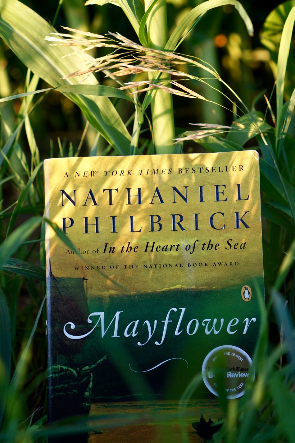 Mayflower by Nathaniel Philbrick book © 2018 ericarobbin.com | All rights reserved.