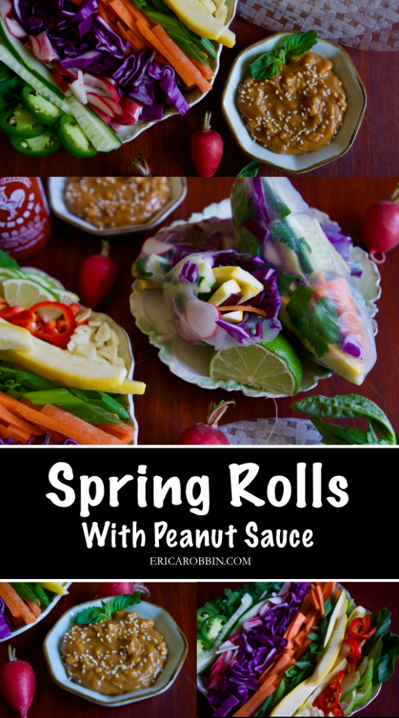 Spring Rolls with Peanut Sauce © 2019 ericarobbin.com | All rights reserved.
