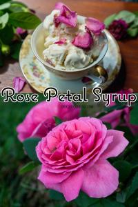 Rose Petal Syrup   Erica Robbin