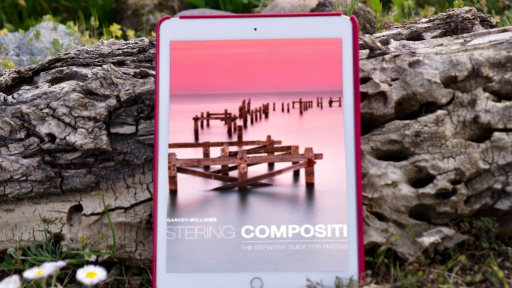 Mastering Composition: The Definitive Guide for Photographers by Richard Garvey-Williams | Erica Robbin
