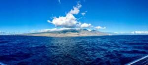 Maui Island, Hawaii   Erica Robbin