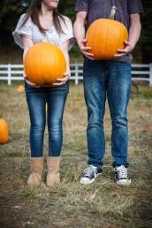 pumpkinpatch31
