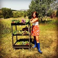 Gardening, Bozeman, MT