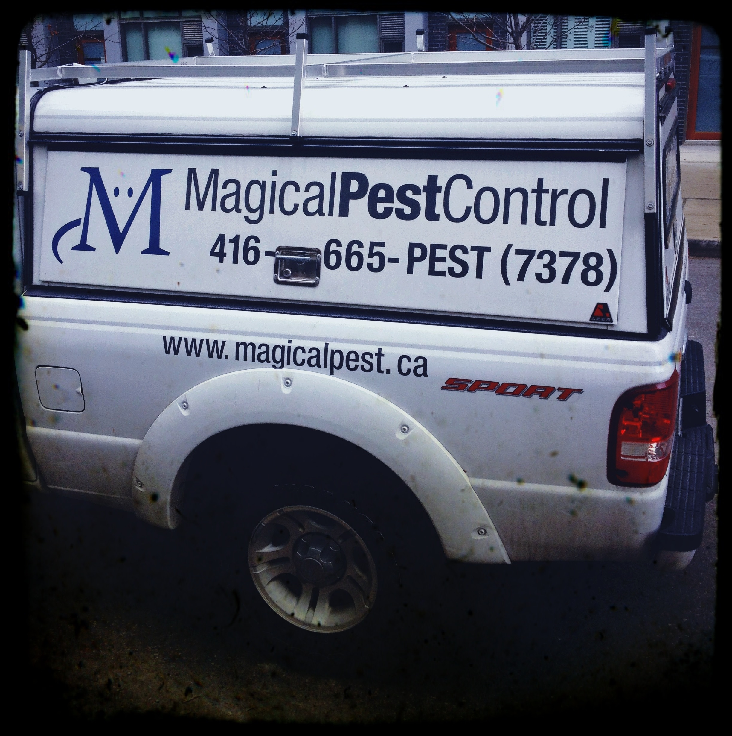 """Finally, Someone Who Can Help With My Unicorn Infestation"" - Magical Pest Control, Toronto"