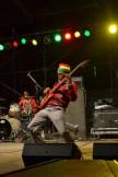 Austin reggae Fest