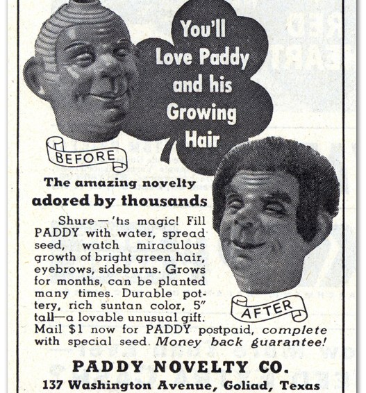 You'll Love Paddy!