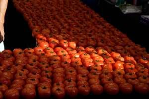 Farmers Market tomatoes, Santa Monica, CA