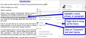 google_drive_comment_instructions