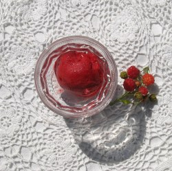 homemade raspberry sorbet