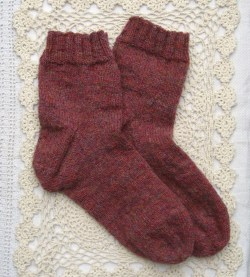spindrift damson socks