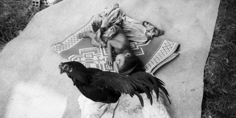 """Interview with John Vink, Magnum Photographer on his new """"Quest For Land"""" book available on the iPad"""